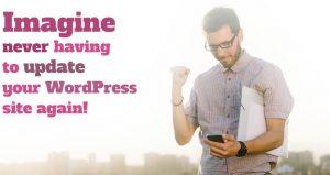 WordPress maintenance contract